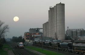 El verso del valor agregado: cayó 60% la exportación argentina de premezclas a pesar de tener un diferencial arancelario extraordinario con el trigo