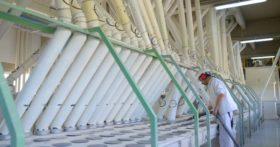 """Se oficializó el """"protocolo de calidad de harina de trigo"""" para  aquellos molinos que quieran diferenciar su producto"""