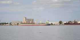 Uruguay tiene 400.000 toneladas de trigo para venderle a la Argentina: las operaciones están bloqueadas para evitar contradecir el relato oficial