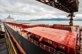 Cuenta regresiva: Brasil ya exportó el 96% del saldo exportable de soja previsto para todo el año