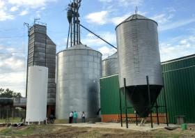 Desburocratización: 28 especialidades agroindustriales ya no deberán solicitar Declaraciones Juradas de Ventas al Exterior