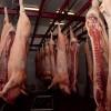 Argentina sueña con morderle un poco del negocio a Brasil: en 2017 logró colocar casi 1800 toneladas de carne porcina en Rusia