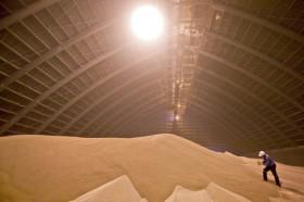 El precio de importación del fosfato monoamónico descendió 65 u$s/tonelada en el último año