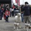 País normal: familias uruguayas pudieron disfrutar el fin de semana de la tradicional Expo Prado