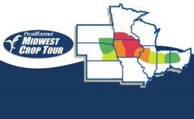 La soja arrancó la semana con fuertes pérdidas en línea con la proyección de una mayor cosecha estadounidense