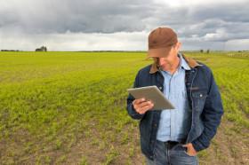 Tablero de riesgo agrícola. ¿Cuánto estás dispuesto a perder si las cosas salen mal?