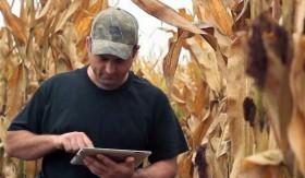 Lanzan la primera aplicación para operar futuros agrícolas por celular