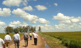 El negocio agrícola tradicional en campo alquilado es inviable: cuáles son los nuevos criterios que se están empleando para reformularlo