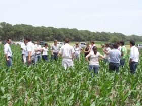 En Santa Fe y Entre Ríos los productores se harán cargo de pagar el ajuste por inflación de los salarios públicos