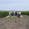 Cada vez menos jóvenes quieren estudiar agronomía: por cada 30 nuevos inscriptos apenas se recibe uno