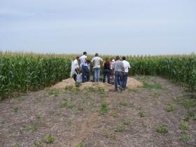 En el último año se registró un fuerte descenso del índice de confianza de los empresarios agropecuarios argentinos