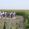 """En Uruguay evalúan incorporar contenidos agropecuarios obligatorios: """"En todas las escuelas se debe educar sobre cómo se producen alimentos"""""""