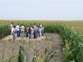 En el último lustro la cantidad de estudiantes de agronomía viene cayendo a un promedio anual de 800 alumnos