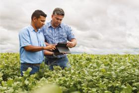 Los productores que vendieron soja en mayo pudieron obtener un ingreso adicional de hasta 1400 $/ha gracias al empleo de la tecnología comercial