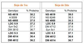 El fin del misterio: la elección del cultivar adecuado es la variable más importante para mejorar el nivel proteico en soja