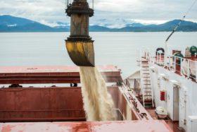 Brasil se prepara para una eventual importación de soja y maíz: suspende temporalmente los aranceles