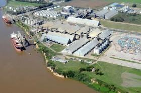 Marcha atrás: la soja ingresada al territorio argentino en el marco del régimen de importación temporaria no abonará tasa de estadística