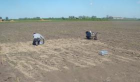 Este año estarán listos los resultados de un ensayo clave sobre el uso agronómico de residuos en tambos