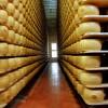 En lo que va del año la exportación argentina de quesos duros creció 35% por mayores ventas a EE.UU. y Rusia