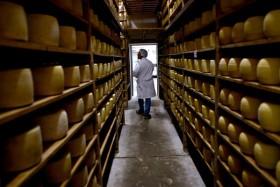 La mitad de las colocaciones de quesos duros argentinos se destina a Rusia: los precios de exportación cayeron 10%