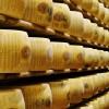 Quesos: uno de los sectores agroindustriales argentinos que la pasarán mal con un TLC Mercosur-Unión Europea