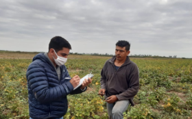 """Agentes del Renatre podrán denunciar a empresarios agropecuarios por """"delitos contra la salud pública"""""""