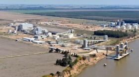 La principal compañía agroindustrial exportadora argentina cambia su nombre: ahora se llama Viterra