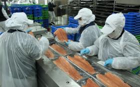 En el primer trimestre las exportaciones chilenas de salmón superaron en 350% a las colocaciones argentinas de carne vacuna