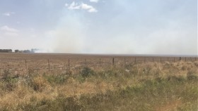 Alerta climática: siguen sin aparecer perspectivas de precipitaciones importantes en la región pampeana