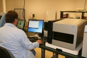 Una revolución silenciosa: envían muestras genéticas de Holando Argentino a EE.UU. para realizar validación genómica