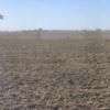 Drama: se consolida la emergencia hídrica en el sector norte de la zona pampeana argentina