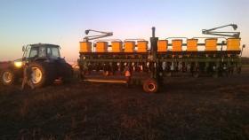 El Inase extiende hasta el 5 de diciembre el plazo para declarar la cantidad de semilla de soja reservada para uso propio: habrá multas para quienes siembren sin certificado oficial