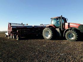 Esta semana habrá tiempo ideal para avanzar con la siembra de trigo