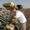 Adiós a la estampilla: las bolsas de semillas de maíz, girasol y soja comenzarán a comercializarse con código IQ-R