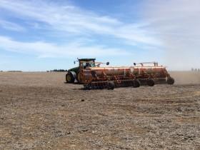 La antigüedad promedio de las diez variedades de soja más sembradas en 2019/20 es de siete años