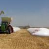 En 2012 las exportaciones de silobolsas sumaron 27,2 M/u$s: Brasil, Uruguay y Sudáfrica concentran el 75% de las ventas