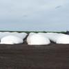 La demanda pide la hora referí: retención efectiva en soja cayó al 16% para intentar tentar a los productores