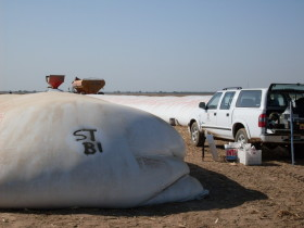 Liberaron nuevas compensaciones para sojeros del norte del país: ya se liquidó casi el 18% del monto comprometido