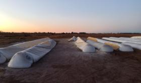 Inseguridad alimentaria: todas las instituciones de la cadena agroindustrial argentina solicitaron que se tomen medidas contra la destrucción de silobolsas