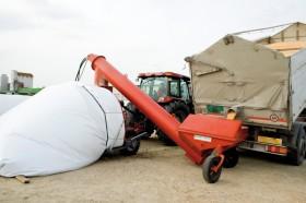 Cayeron las exportaciones de silobolsas: las colocaciones se concentran en el Mercosur