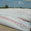 Con la devaluación se restringió aún más la venta de soja: las operaciones se reactivarán sólo cuando haya necesidad de financiar la nueva campaña