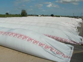Liberaron nuevas compensaciones para sojeros del norte del país: ya se liquidó casi el 39% del monto comprometido