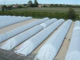 """Bronca en el agro contra Infobae por un artículo que asegura que """"los productores de soja acumulan 9000 M/u$s en los silobolsas"""""""