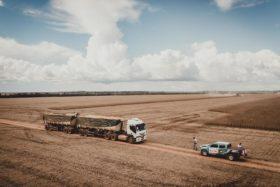 Factor alcista: Brasil ya exportó el 88% del saldo exportable de soja previsto para todo el año