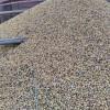 Las subas generadas por el desastre climático promovieron en lo que va de abril compras de futuros de soja por más de 700.000 toneladas