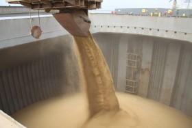 Tan lejos y tan cerca: en lo que va del año la soja subió 22% en Brasil al tiempo que cayó 16% en Argentina