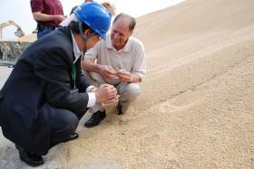 Malas noticias: China necesita comprar soja sudamericana barata para compensar las perdidas generadas con la mercadería estadounidense