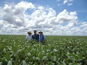 Colombia: la próxima frontera agrícola de los productores argentinos