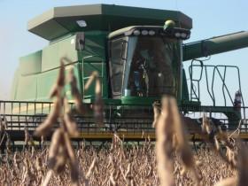 Sigue el tiempo ideal para avanzar con la cosecha: recién el miércoles ingresará un frente frío a la región central del país