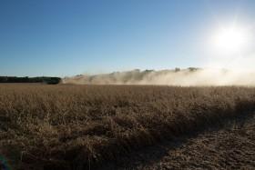 Se fue Cristina pero volvió Néstor: la participación del Estado en la renta agrícola regresó a los niveles presentes en 2007